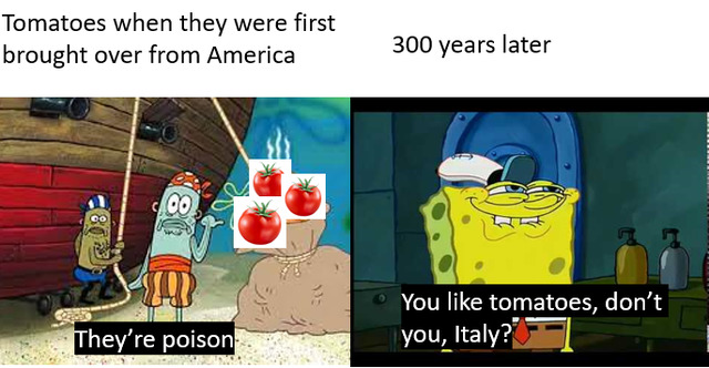 Italy loves poison bc they're toxic. - meme