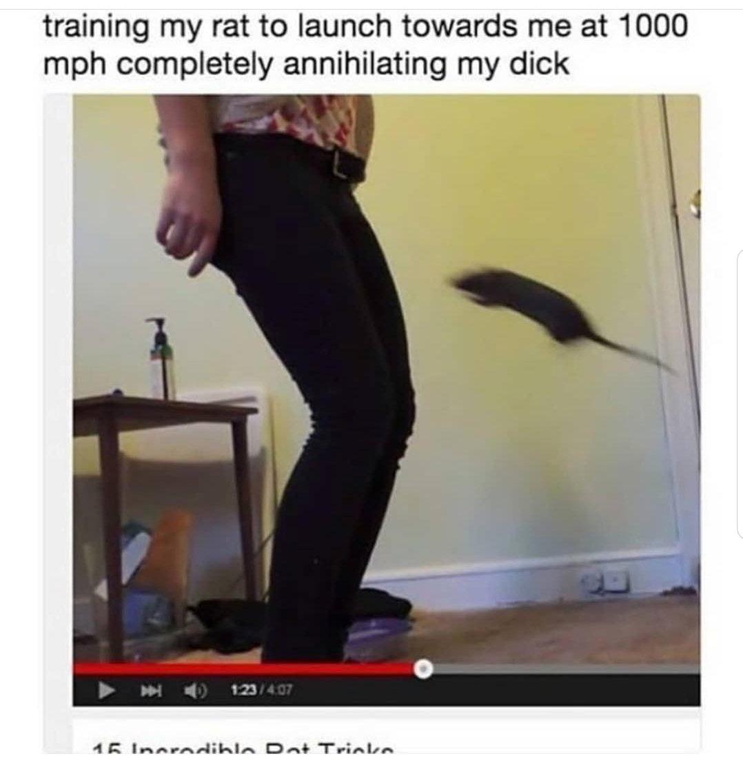 Teach them to annihilate - meme