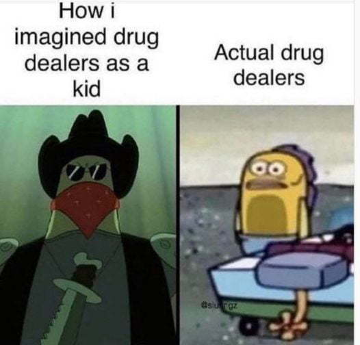 Don't do drugs, I did em and they aint too good - meme