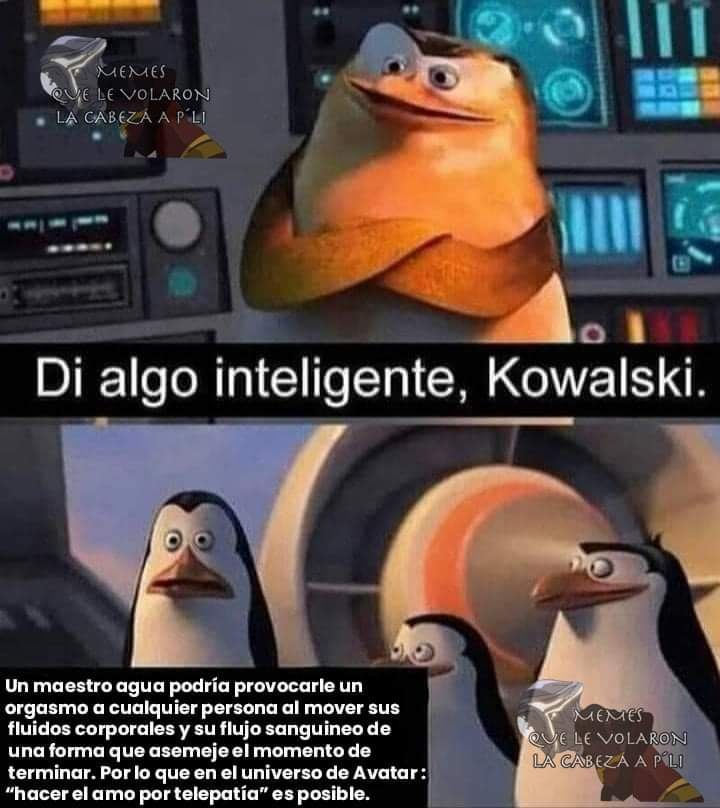 Grande Kowalski - meme