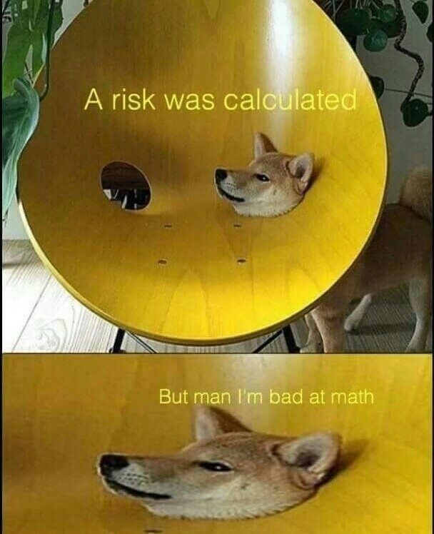 Doggo does a stuck - meme