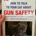 Protect Your Cattos and Kitters