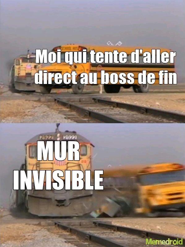 Mur invisible à 17,95€ chez carrefour - meme
