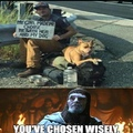 you've chosen wisely