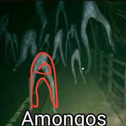 amongas - meme