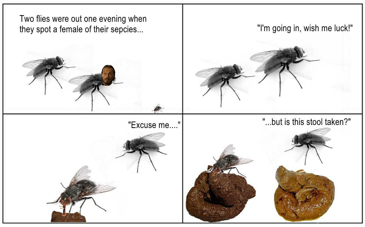 A true shit post - meme