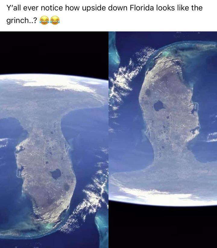 Grinch's ultimatum - meme