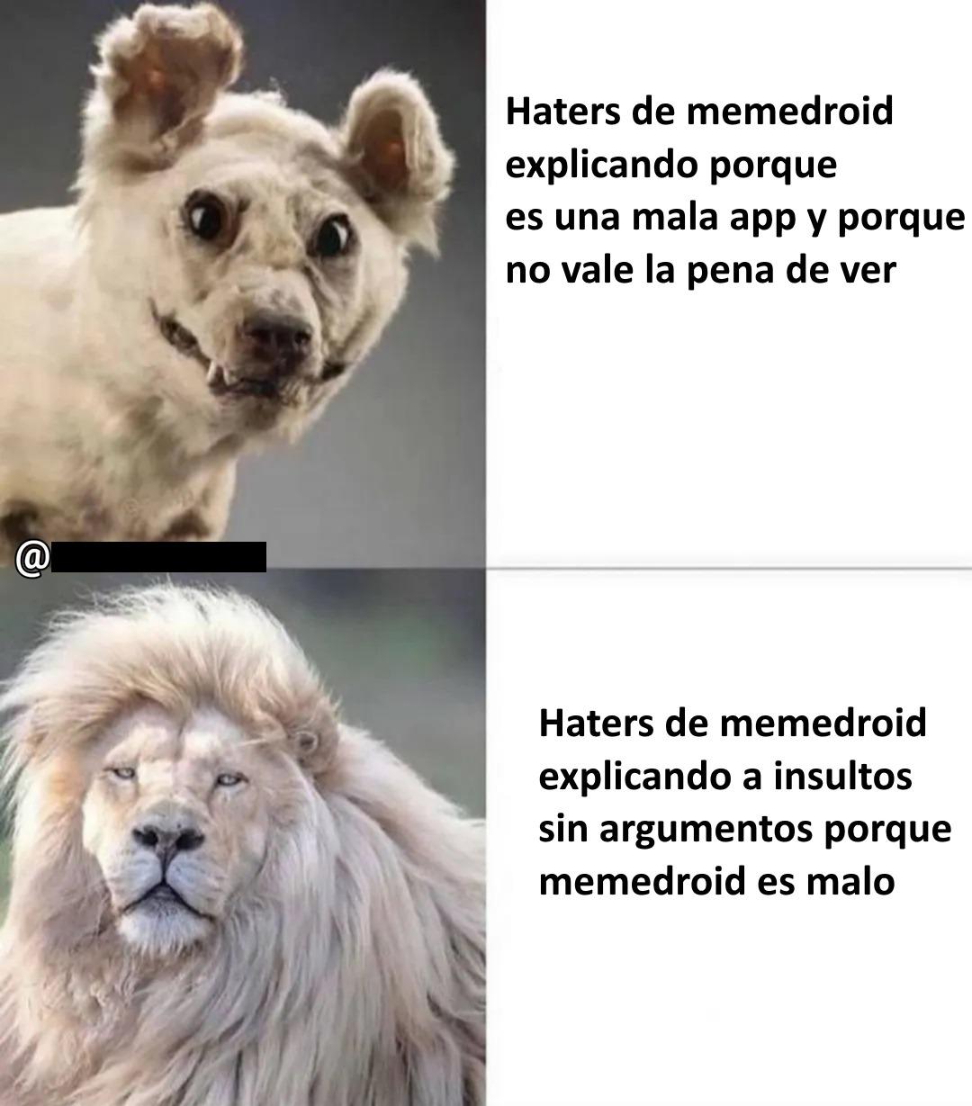 este es el unico meme en el que admiro a los haters, y eso que soy amable pendejos PD: El comentario con mas positivos no dice la verdad