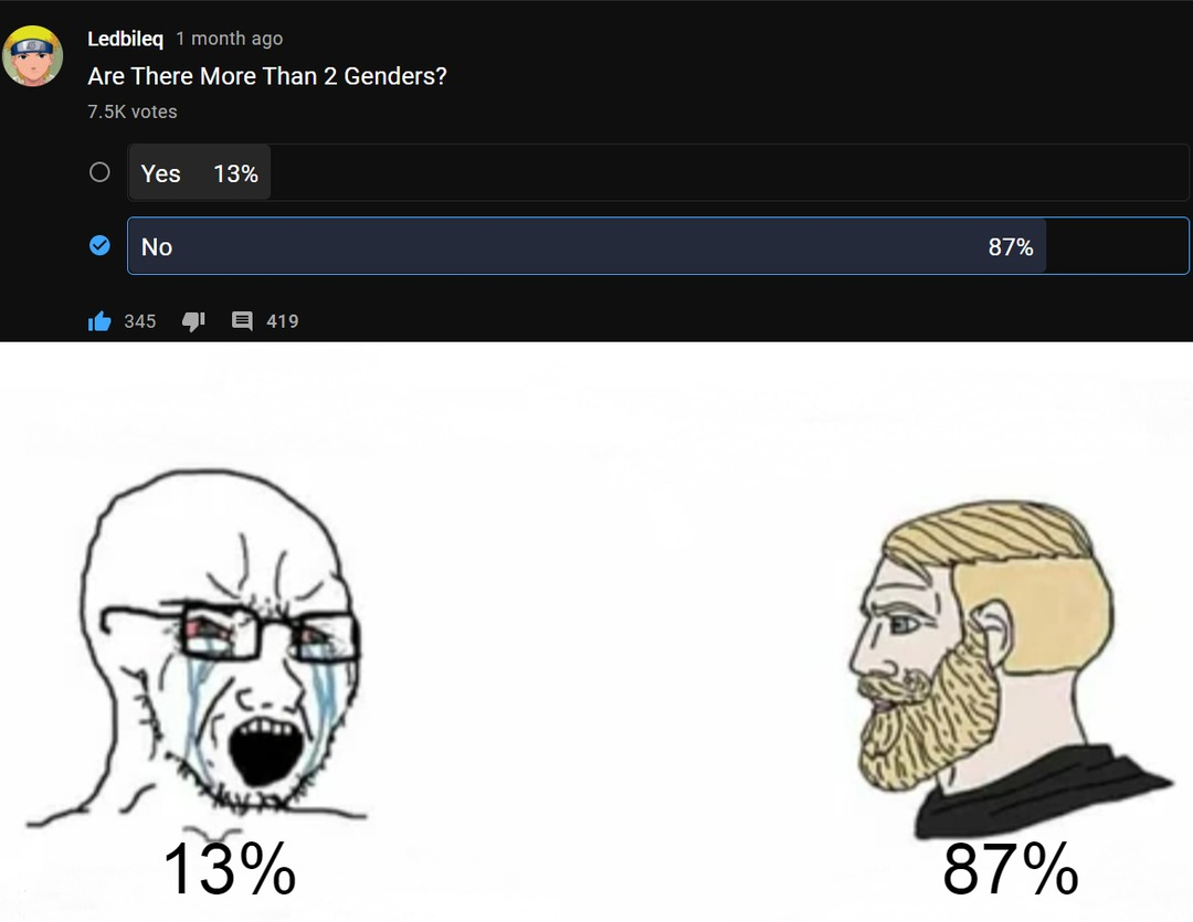 87% of voters are based and red-pilled - meme
