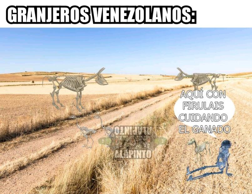 Venezolanos - meme