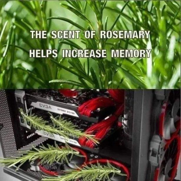 Gonna have to start a garden - meme