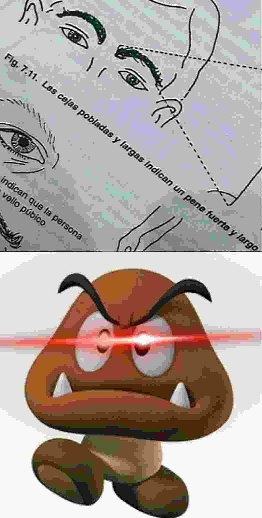 Goombs - meme