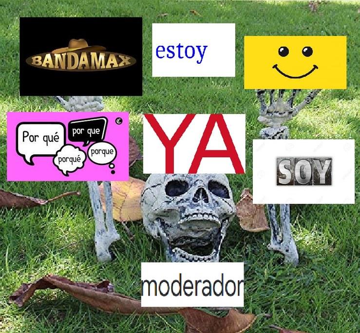 Asi es banda, soy moderador - meme