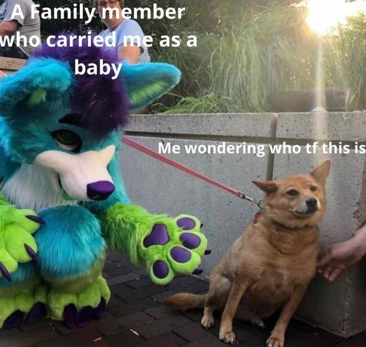 I don't remember you - meme