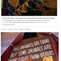 Animal farm...