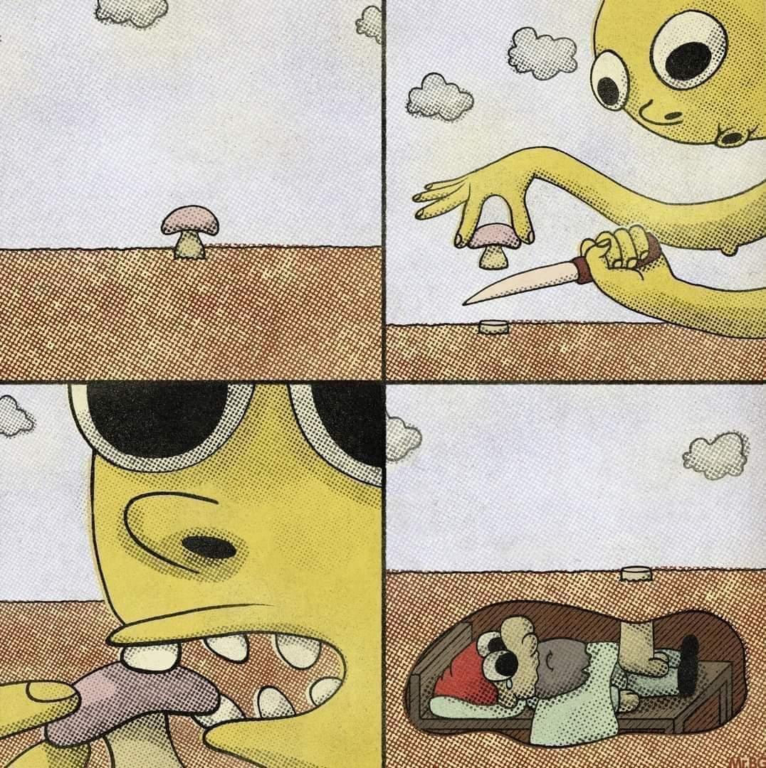 Oh gnome - meme