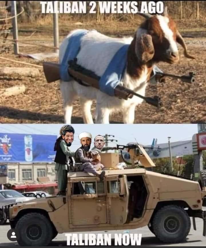Taliban - meme