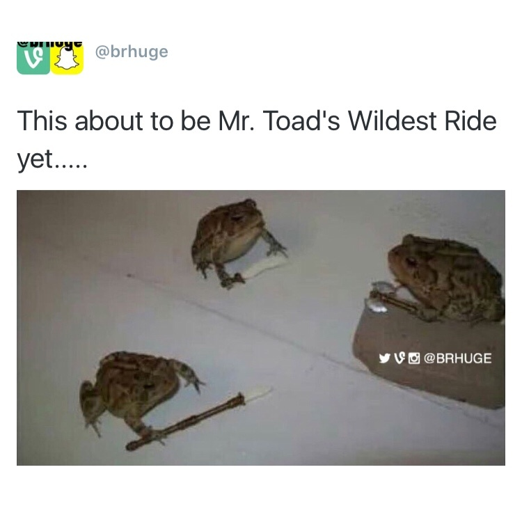 mr. Toads Wild Ride - meme