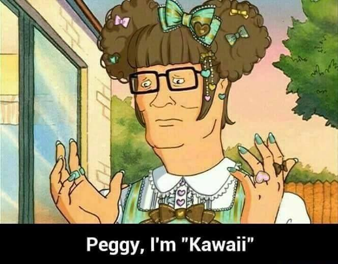 I sell kawaii propane accessories - meme