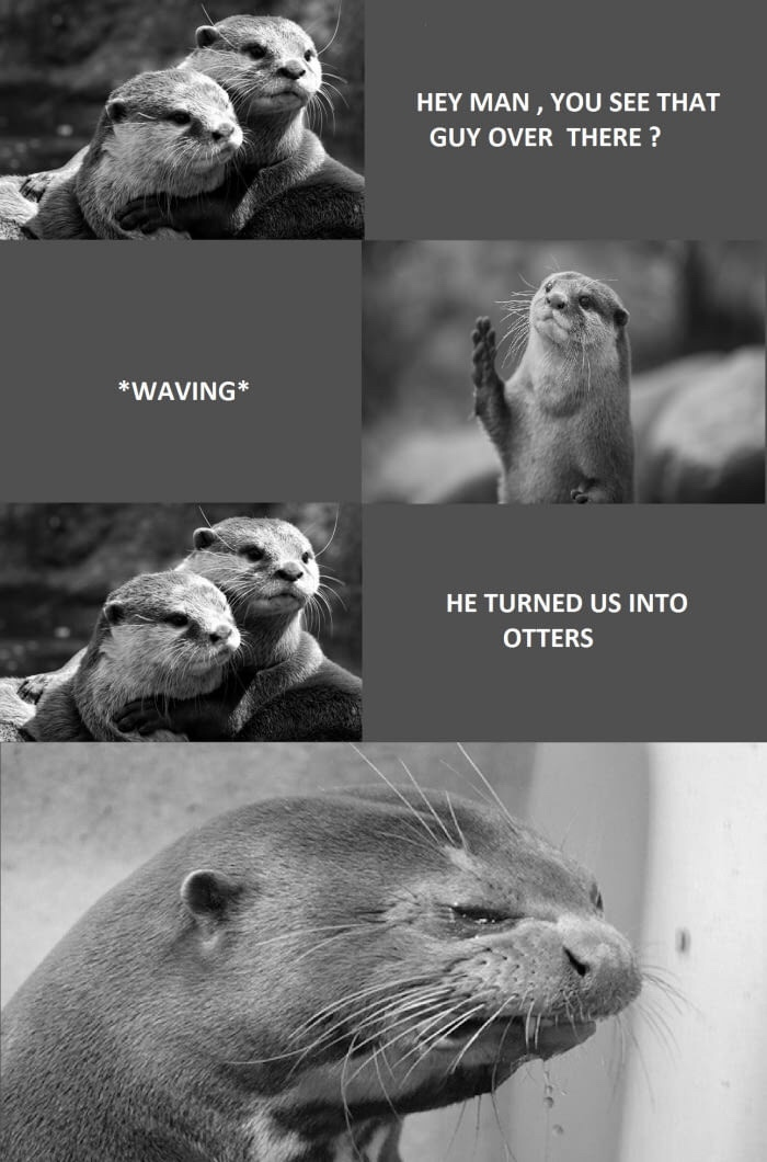 we're otters