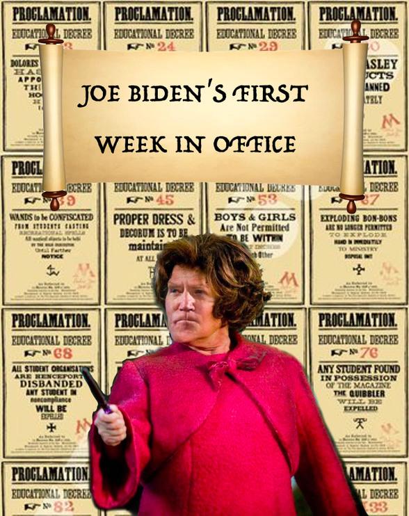 Biden's First Week in Office - meme