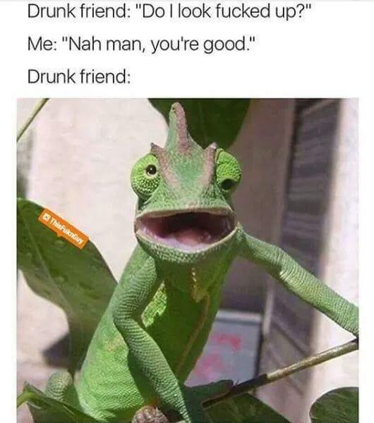 he fine - meme