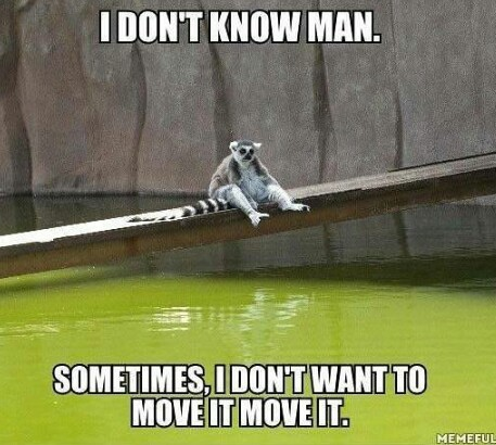 Just move it man - meme