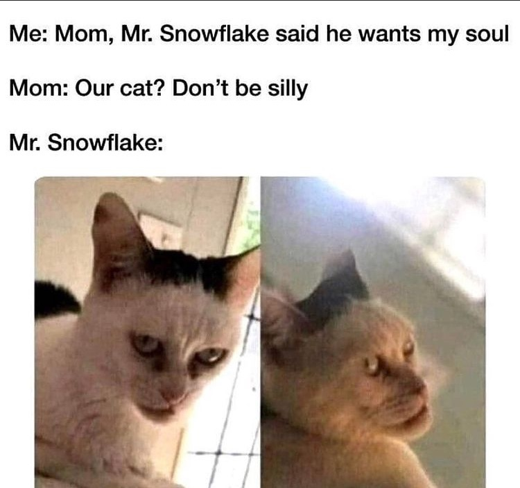 snowflake will eat your soul - meme