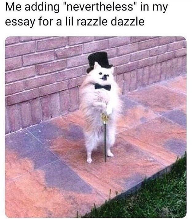 razzle dazzle - meme