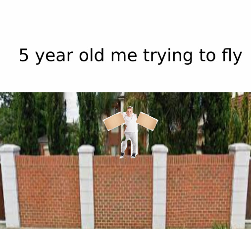 5 year old me trying to fly - meme