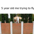 5 year old me trying to fly