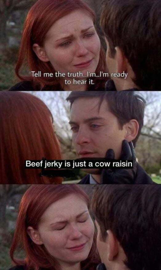 Lesbians are just dick vegans. - meme