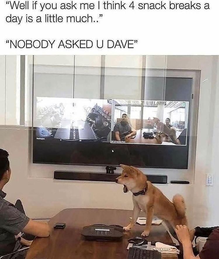 fuck you Dave - meme
