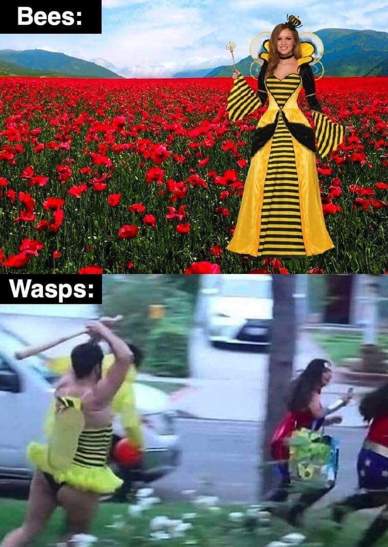 Save the bees - meme