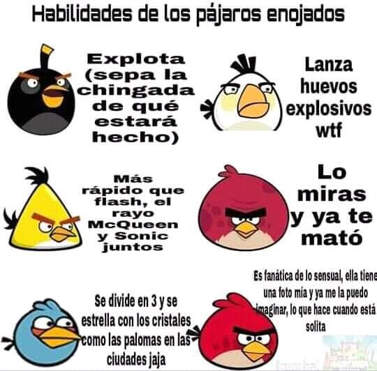 Angy bird - meme
