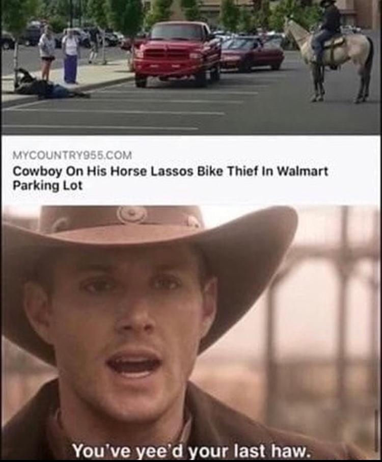 you're last haw - meme