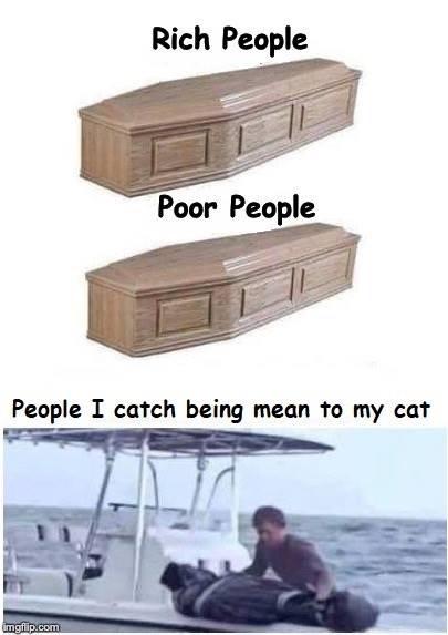 cat smack.  I won't take crap - meme