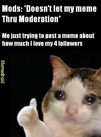 Why do mods not like wholesome memes?