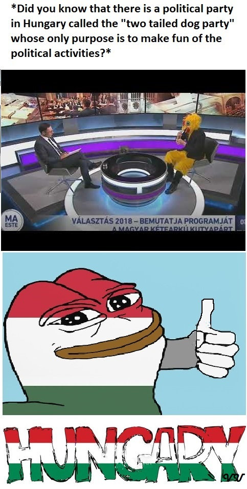 we love hungary - meme
