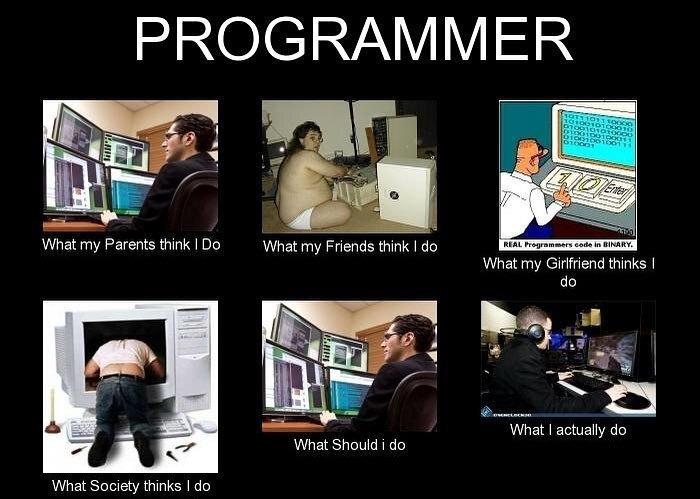 programmer: - meme