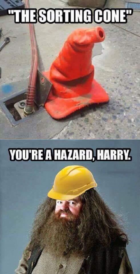 You're a blizzard, Harry - meme