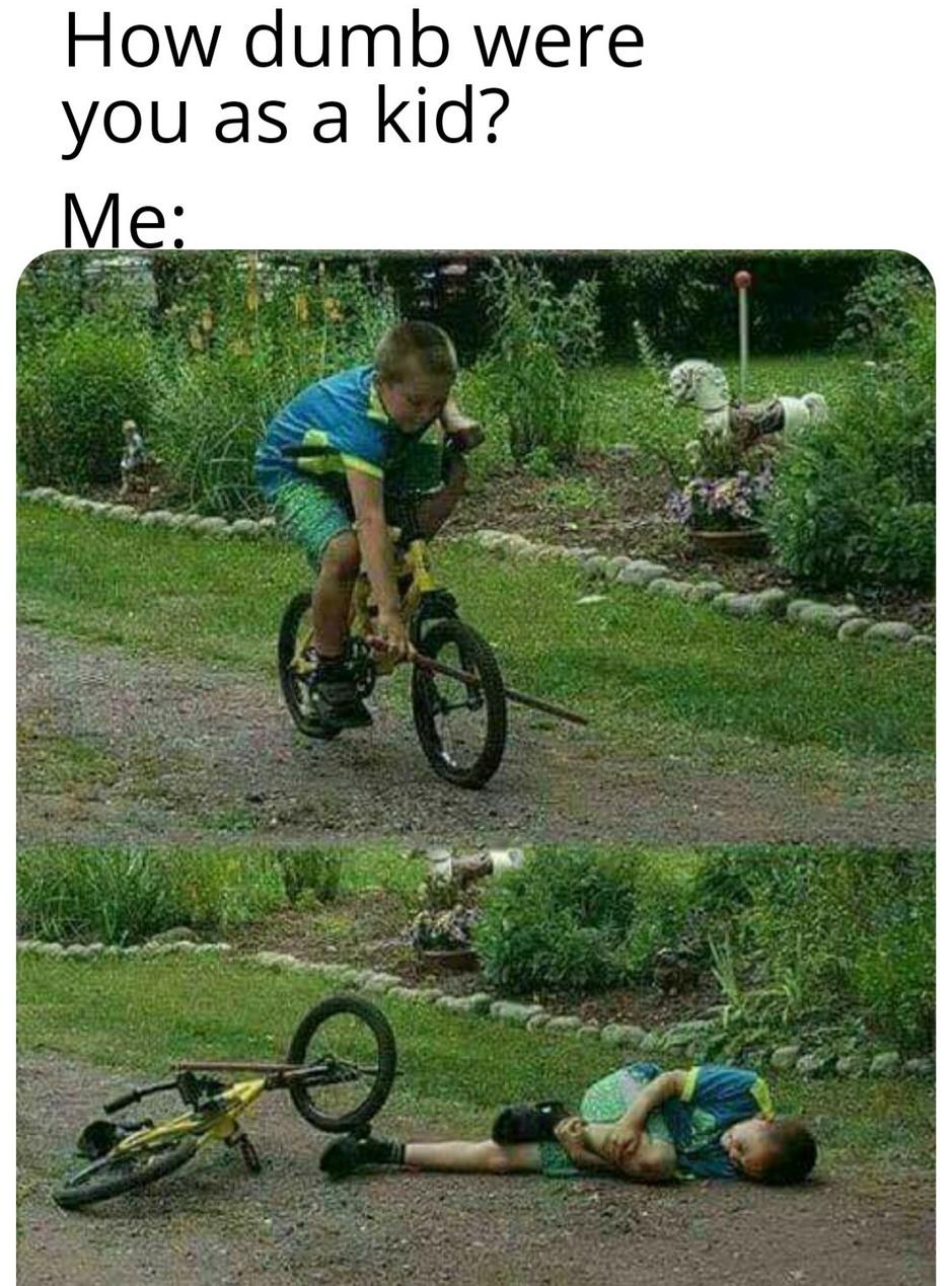 Never learn - meme