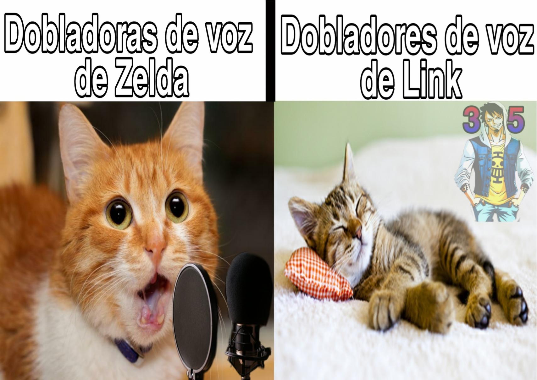 Cuál es vuestro Zelda favorito ? El mío Skyward Sword - meme