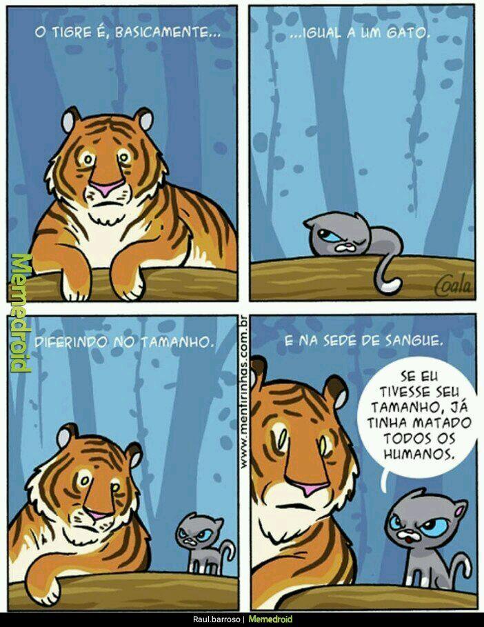 Tigre<Gato - meme