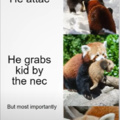 Red Panda is The Smol Panda