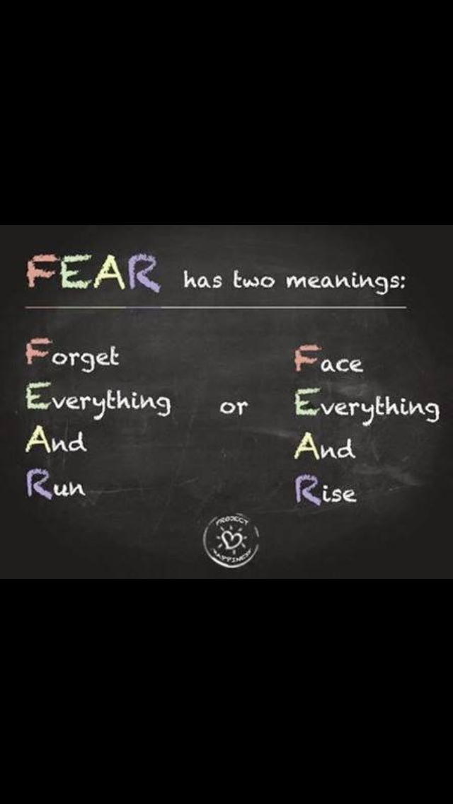 FEAR. rise or fall? - meme