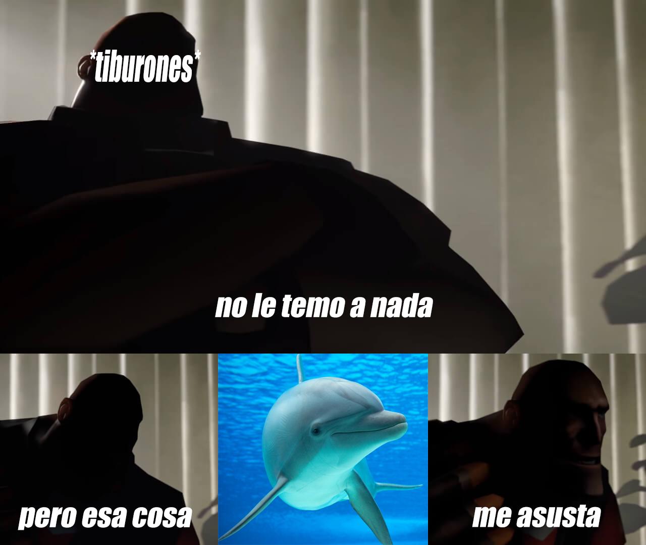 Contexto: si los delfines ven a un tiburón lo atacan automáticamente porque compiten por la comida así que estos huyen al verlos. - meme