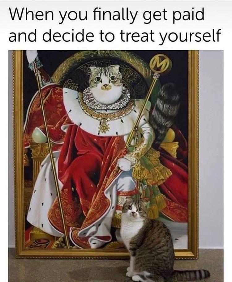 king kat - meme