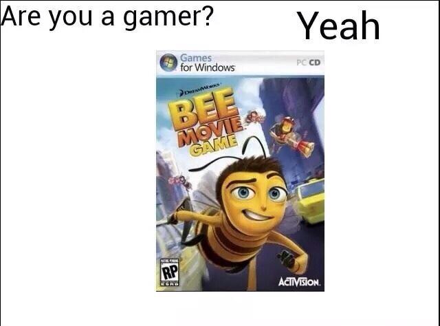 I'm a gamer girl - meme