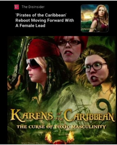 karens of the carribean - meme